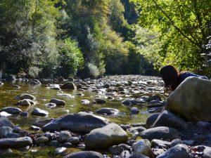Río Saja a su paso por Sopeña